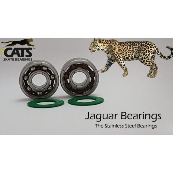 Cats Bearing Jaguar Rustproof 608 Bearings (16 pack)